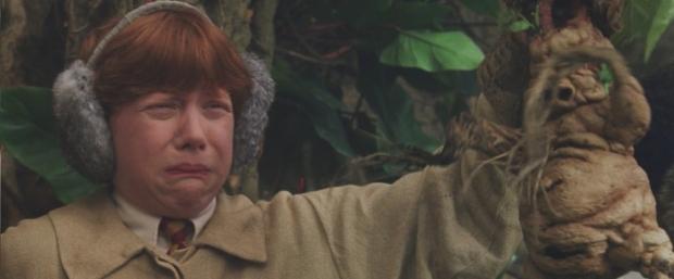 Ron Weasley in Harry Potter   © JK Rowling